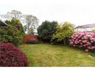 Photo 15: 4113 Larchwood Dr in VICTORIA: SE Lambrick Park House for sale (Saanich East)  : MLS®# 699447