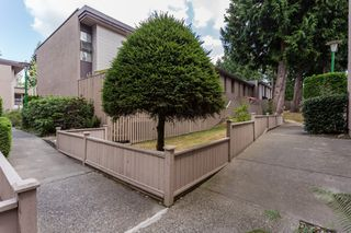 "Photo 28: 49 13809 102 Avenue in Surrey: Whalley Townhouse for sale in ""The Meadows"" (North Surrey)  : MLS®# F1447952"
