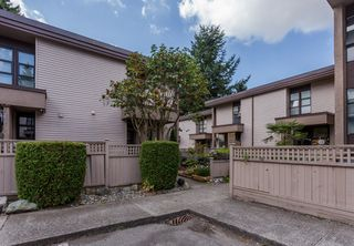 "Photo 29: 49 13809 102 Avenue in Surrey: Whalley Townhouse for sale in ""The Meadows"" (North Surrey)  : MLS®# F1447952"