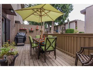 "Photo 26: 49 13809 102 Avenue in Surrey: Whalley Townhouse for sale in ""The Meadows"" (North Surrey)  : MLS®# F1447952"