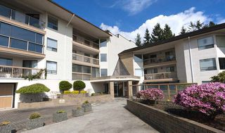 "Photo 13: 303 1350 VIDAL Street: White Rock Condo for sale in ""Seapark East"" (South Surrey White Rock)  : MLS®# R2002372"