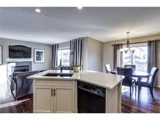 Photo 10: 41 ROYAL BIRCH Crescent NW in Calgary: Royal Oak House for sale : MLS®# C4041001