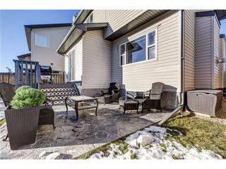 Photo 31: 41 ROYAL BIRCH Crescent NW in Calgary: Royal Oak House for sale : MLS®# C4041001