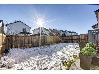 Photo 30: 41 ROYAL BIRCH Crescent NW in Calgary: Royal Oak House for sale : MLS®# C4041001