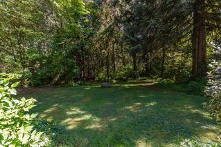 Photo 20: 23328 142 Avenue in Maple Ridge: Silver Valley House for sale : MLS®# R2078383
