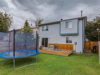 Photo 48: 96 FALTON Way NE in Calgary: Falconridge House for sale : MLS®# C4072963