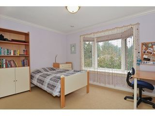 Photo 5: 6389 LARCH Street: Kerrisdale Home for sale ()  : MLS®# V1102431