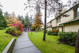 Photo 18: 35 21960 RIVER Road in Maple Ridge: West Central Townhouse for sale : MLS®# R2118565