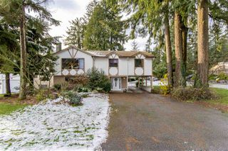 Photo 45: 3497 HASTINGS Street in Port Coquitlam: Woodland Acres PQ House for sale : MLS®# R2126668