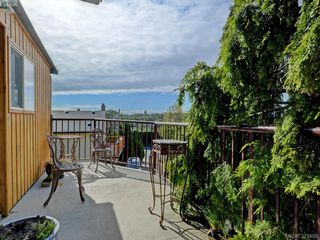 Photo 19: 1295 Montrose Avenue in VICTORIA: Vi Hillside Single Family Detached for sale (Victoria)  : MLS®# 379488