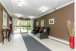 Photo 2: 221 1025 Inverness Rd in VICTORIA: SE Quadra Condo for sale (Saanich East)  : MLS®# 772775
