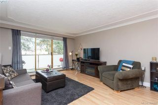Photo 4: 221 1025 Inverness Rd in VICTORIA: SE Quadra Condo for sale (Saanich East)  : MLS®# 772775