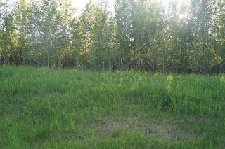 Main Photo: Range Road 150 HWY 748 East: Rural Yellowhead Rural Land/Vacant Lot for sale : MLS®# E4094061