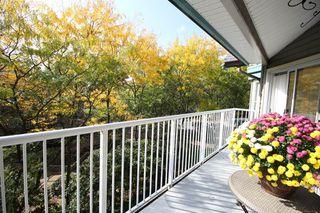 """Photo 8: 319 15110 108TH Avenue in Surrey: Guildford Condo for sale in """"Riverpointe"""" (North Surrey)  : MLS®# R2310519"""