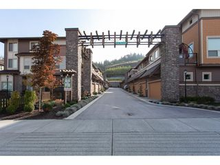 "Photo 3: 31 10550 248 Street in Maple Ridge: Thornhill MR Townhouse for sale in ""THE TERRACES"" : MLS®# R2319742"