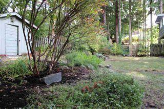 Photo 20: 2553 LOMOND Way in Squamish: Garibaldi Highlands House for sale : MLS®# R2339382