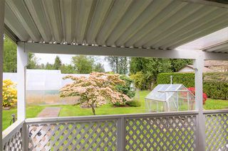 Photo 9: 24039 ROBERTSON Crescent in Langley: Salmon River House for sale : MLS®# R2348566