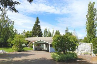 Photo 16: 24039 ROBERTSON Crescent in Langley: Salmon River House for sale : MLS®# R2348566