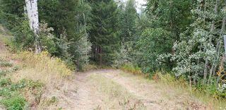 Photo 11: LOT 5 TAPPING Road: Cluculz Lake Land for sale (PG Rural West (Zone 77))  : MLS®# R2354485