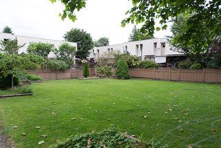 Photo 30: 309 11650 96th Avenue in Delta Gardens: Home for sale : MLS®# F1316110
