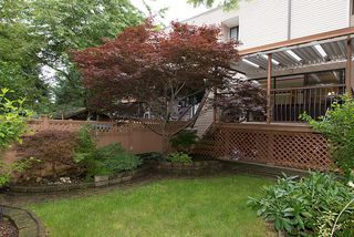 Photo 29: 309 11650 96th Avenue in Delta Gardens: Home for sale : MLS®# F1316110