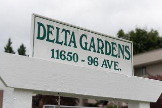 Photo 1: 309 11650 96th Avenue in Delta Gardens: Home for sale : MLS®# F1316110