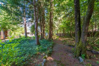 Photo 6: 65641 GARDNER Drive in Hope: Hope Kawkawa Lake House for sale : MLS®# R2377110