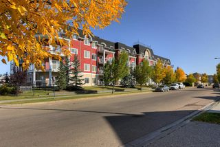 Photo 30: 410 226 MACEWAN Road in Edmonton: Zone 55 Condo for sale : MLS®# E4180612