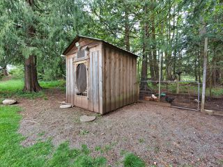 Photo 13: 4267 Marsden Rd in COURTENAY: CV Courtenay West House for sale (Comox Valley)  : MLS®# 838779