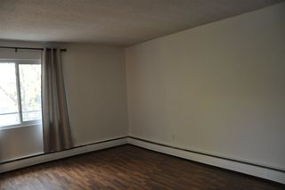 Photo 9: 8 10515 80 Avenue in Edmonton: Zone 15 Condo for sale : MLS®# E4218030