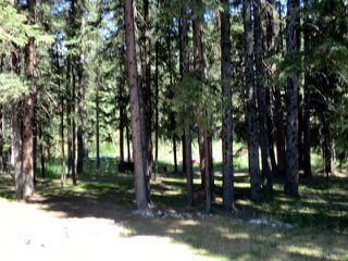 Photo 30: 6 West GHOST ROAD Benchlands, AB: Rural Bighorn M.D. House for sale : MLS®# C3642196
