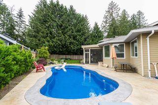 Photo 19: 20316 123B Avenue in Maple Ridge: Northwest Maple Ridge House for sale : MLS®# R2072552