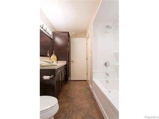 Photo 15: 518 Ferry Road in Winnipeg: St James Residential for sale (5E)  : MLS®# 1626833