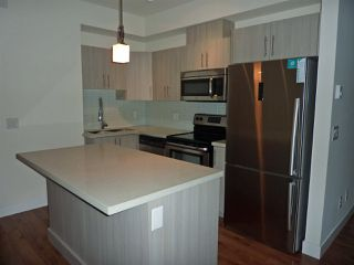 "Photo 3: 313 12070 227 Street in Maple Ridge: East Central Condo for sale in ""STATIONONE"" : MLS®# R2120977"