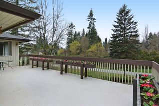 """Photo 16: 7840 227 Crescent in Langley: Fort Langley House for sale in """"FOREST KNOLLS"""" : MLS®# R2153173"""