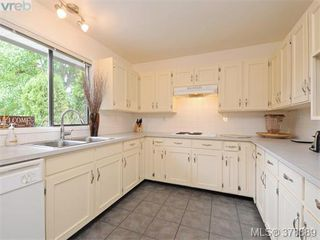 Photo 5: 1532 KENMORE Rd in VICTORIA: SE Gordon Head Single Family Detached for sale (Saanich East)  : MLS®# 759808