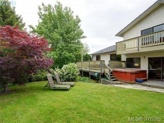 Photo 20: 1532 KENMORE Rd in VICTORIA: SE Gordon Head Single Family Detached for sale (Saanich East)  : MLS®# 759808