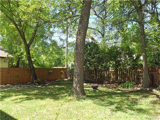 Photo 17: 95 Cunnington Avenue in Winnipeg: Elm Park Residential for sale (2C)  : MLS®# 1715002