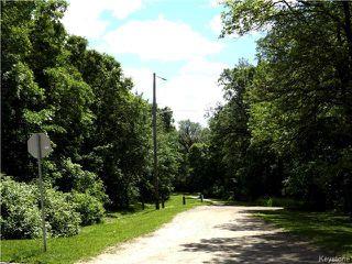 Photo 5: 95 Cunnington Avenue in Winnipeg: Elm Park Residential for sale (2C)  : MLS®# 1715002