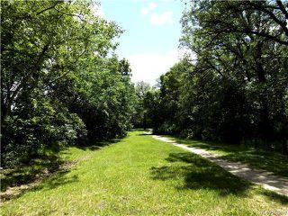 Photo 18: 95 Cunnington Avenue in Winnipeg: Elm Park Residential for sale (2C)  : MLS®# 1715002