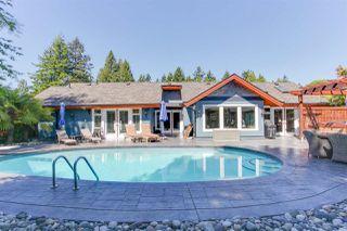Photo 19: 74 DEERFIELD Place in Delta: Pebble Hill House for sale (Tsawwassen)  : MLS®# R2226014