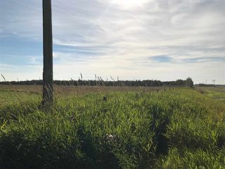 Photo 15: 57525 Rg Rd 214: Rural Sturgeon County Rural Land/Vacant Lot for sale : MLS®# E4138174