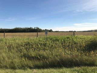 Photo 11: 57525 Rg Rd 214: Rural Sturgeon County Rural Land/Vacant Lot for sale : MLS®# E4138174