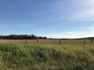 Photo 16: 57525 Rg Rd 214: Rural Sturgeon County Rural Land/Vacant Lot for sale : MLS®# E4138174