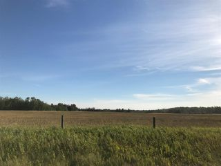 Photo 21: 57525 Rg Rd 214: Rural Sturgeon County Rural Land/Vacant Lot for sale : MLS®# E4138174