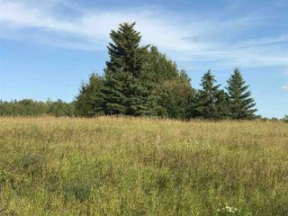 Photo 13: 57525 Rg Rd 214: Rural Sturgeon County Rural Land/Vacant Lot for sale : MLS®# E4138174