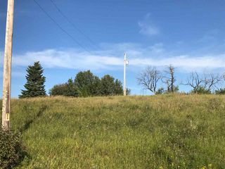 Photo 14: 57525 Rg Rd 214: Rural Sturgeon County Rural Land/Vacant Lot for sale : MLS®# E4138174