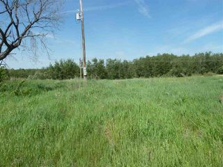 Photo 2: 57525 Rg Rd 214: Rural Sturgeon County Rural Land/Vacant Lot for sale : MLS®# E4138174