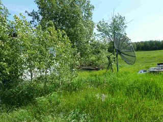 Photo 25: 57525 Rg Rd 214: Rural Sturgeon County Rural Land/Vacant Lot for sale : MLS®# E4138174