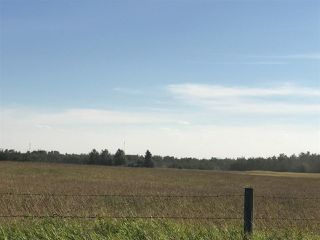 Photo 22: 57525 Rg Rd 214: Rural Sturgeon County Rural Land/Vacant Lot for sale : MLS®# E4138174